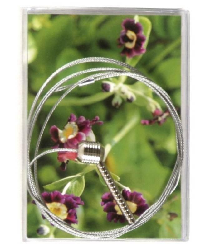 Magnets Photoline Steely Dan